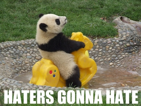 img-haters-gonna-hate-panda-352
