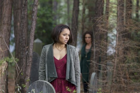 We might have lost Bonnie and Damon? [farfarawaysite.com]